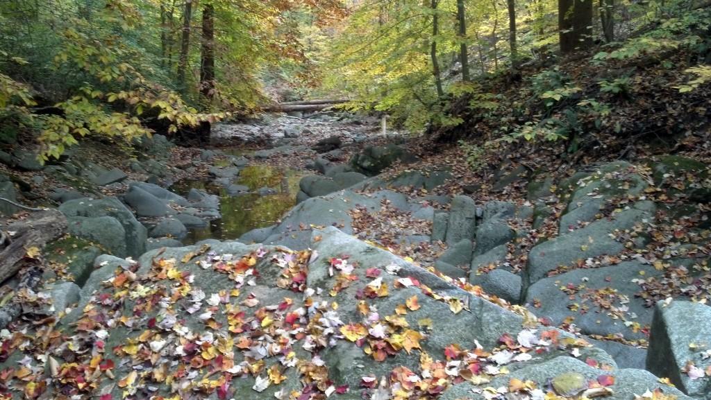 Soapstone Valley, Nov. 6, 2013 (Photo by Michael E. Grass)